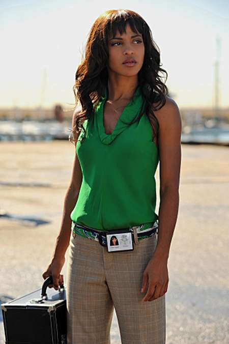 Megalyn Echikunwoke appeared as Tara Price in CSI: Miami season 7.